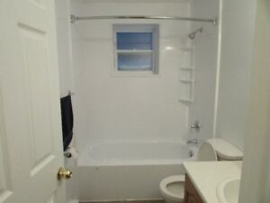 Large and Cozy One Bedroom Basement Apartment in Mount Pearl
