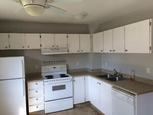 Countertop Ice Maker Edmonton : Range Hood Kijiji: Free Classifieds in Edmonton. Find a job, buy a ...