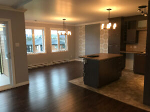 Large 4 1/2 condo style apartment, with propane fireplace