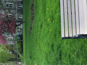 LAWN MOWING/LANDSCAPING BUSINESS FOR SALE IN WESTISLAND