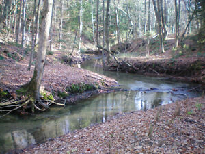 Farm for Sale, w/LAKEVIEWS, Forest, Creek, Trails, Privacy