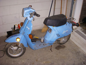 1984 NQ50 Honda Spree PocketBike/Motorcycle