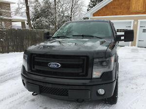 2013 Ford F-150 FX4 Camionnette