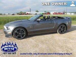 2014 Ford Mustang GT  - Leather Seats -  Bluetooth - $215.25 B/W