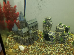 Fish tank accessories take alook @ pics
