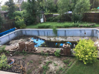 Want My Pool Filled In - Cash