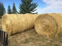 Round wheat straw bales for sale