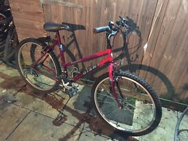 Giant Hollywood Ladies Bike. Serviced, Free Lock, Lights/Delivery