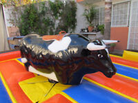 Rodeo Mexico Mechanical Bull Rental
