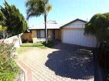 Leeming House for Rent ! Leeming Melville Area Preview