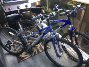 His and Her Schwinn Bicycles