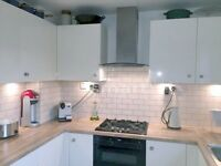 STUNNING ROOM IN A SPACIOUS 2 BED FLAT TO SHARE WITH SINGLE MALE PROFESSIONAL