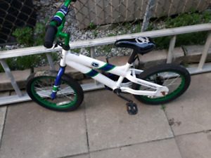 Kids Nhl bike