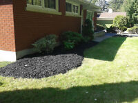 Quality Lawn Care/Landscaping at Affordable Prices