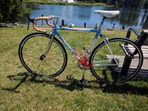 "Original Battaglin ""World Champion '87"" Italian road bike"