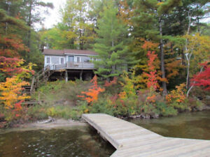 Gull Lake waterfront cottage rental in Gravenhurst #1782