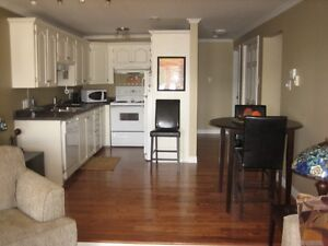 ONE + BEDROOM FULLY FURNISHED CONDO FOR RENT