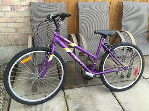 Woman's NEXT Challenger Ten Steel Mountain Bike