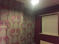 3 Bed, house, DSS welcome, no deposit, to let / rent, Peterlee, Durham,Sunderland