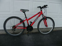 Norco Ignitor Kids' Mountain Bike
