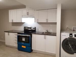New Basement for rent (Sheppard/Warden)