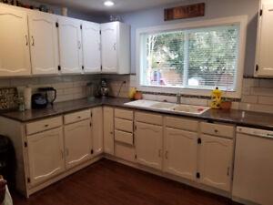 Bright 2 bedroom basement suite for rent in Fairfield Island