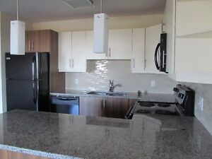 Spacious 2 bedroom Apartment at the top of Larry Uteck