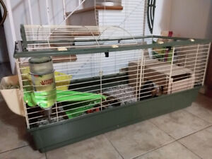 Cage for rabbit or guinea pigs