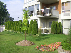 41/2 for rent /sunny Beautiful appartment//Ensoleillé