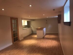 One bedroom BRIGHT basement apartment for Rent