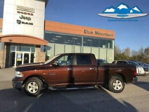 2015 Ram 1500 SLT  1 OWNER LOCAL TRADE, SOLD SERVICED HERE!!!