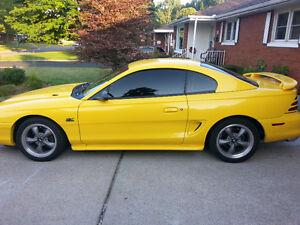 94 Mustang gt