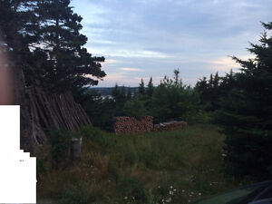LAND - 3/4 of an acre vacant lot in New Harbour, Ocean View St. John's Newfoundland image 1