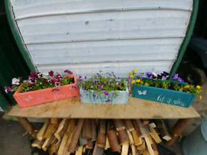 Rustic Wooden Flower Boxes