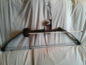 Compound bow with fishing attachment