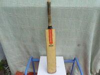 Cricket bat.