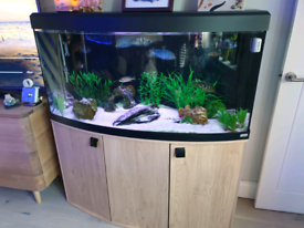 Used, Fluval Vicenza 260l fish tank - oak effect cabinet plus extras for sale  Hethersett, Norfolk