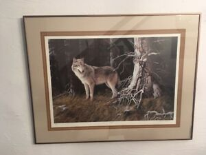 """Timberwolf"" signed, limited edition framed print"
