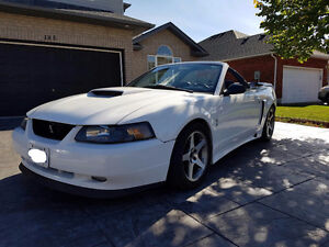 2002 Ford Mustang Gt Convertible Cambridge Kitchener Area image 2