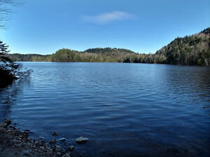 Terrains Lac Archange Ste-Thècle.