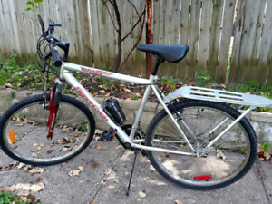 Adult Bike in Excellent Condition