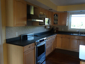 Kitchen cabinets, counter top, stainless sink and faucet