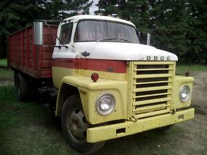 Dodge 600 Grain Truck