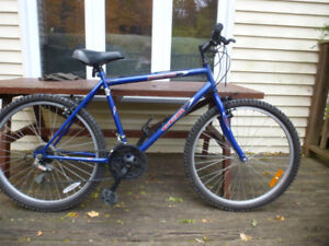 """CCM Echo 15 speed bike with 26"""" tires and 20"""" frame"""