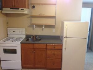 BRIGHT BACHELOR CLOSE TO AIRPORT/400/401..NEW SHOWER