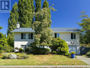 Mt Doug/Uvic Area - share 2 bedroom above ground suite