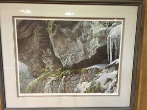 Robert Bateman signed, framed print