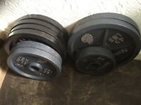 132 kg olympic weight plates