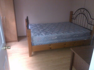 3 bedrooms for male students  starting Jan. 2017 .ALL INCLUDED. Kitchener / Waterloo Kitchener Area image 2