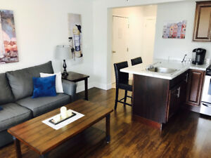 EXECUTIVE FURNISHED APT DOWNTOWN CH'TOWN WEEKLY/MONTHLY RENTAL